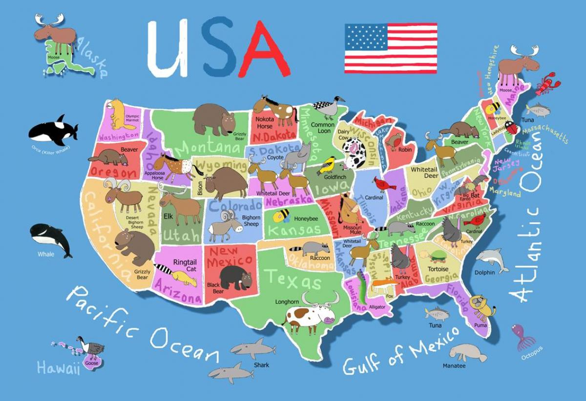 United States map for kids - Map of United States for kids ...